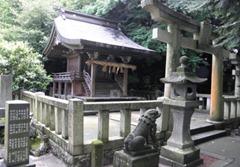 中嶋神社の全景と左中央が橘の木